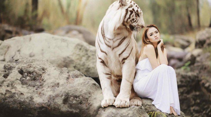 L'animal le plus dangereux pour l'Homo sapiens est…